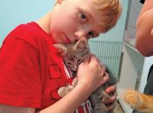 boy & kitten