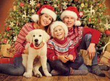 Get a family portrait