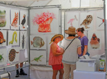 Attend the Grand Haven Art Festival