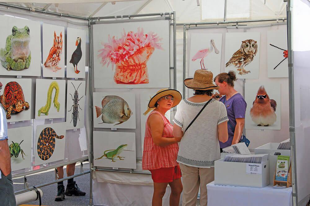 Attend the Grand Haven Art Festival