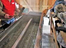 Van Raalte Farm maple syrup tapping program; Outdoor Discovery Center, Holland